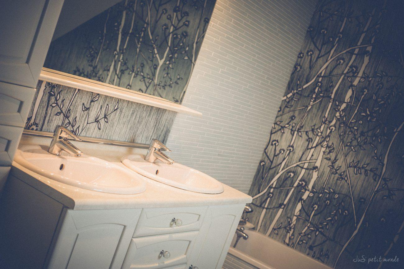 Type De Salle De Bain rénovation d'une salle de bain chez m. et mme c., saint